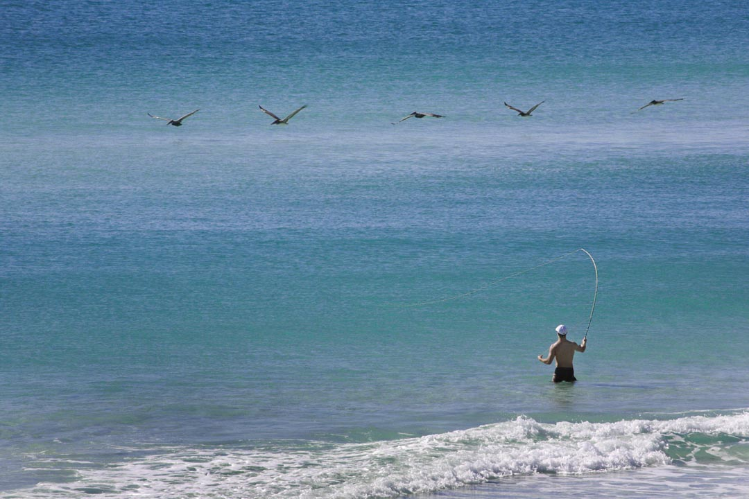 fishing offshore for destin gallery
